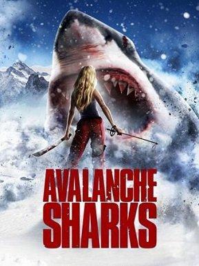 Avalanche_Sharks